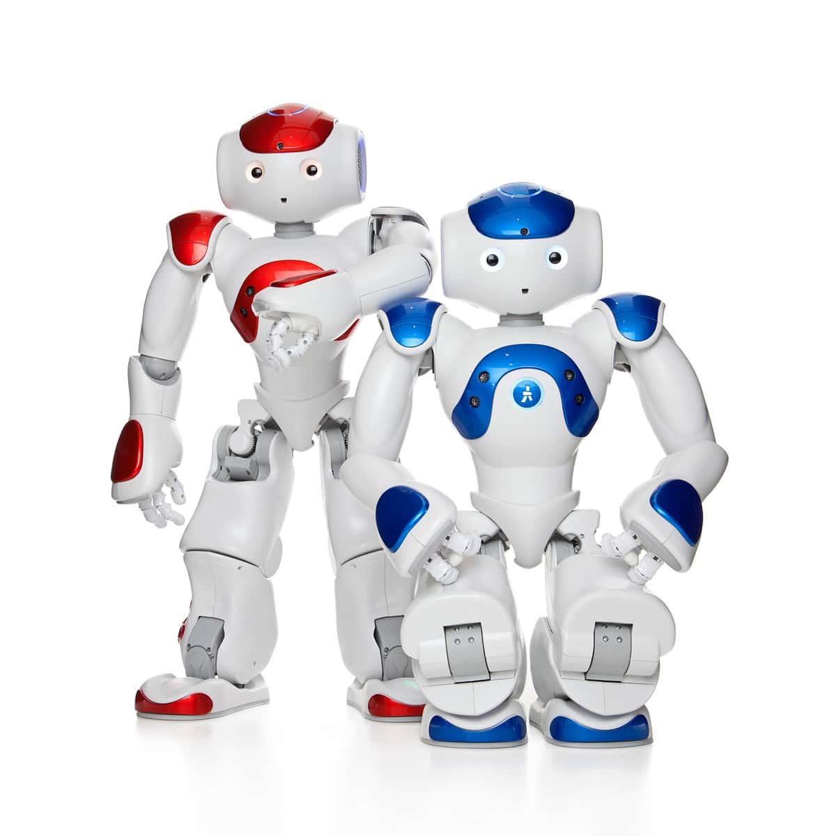 BEHAVIOUR DESIGN OF NAO HUMANOID ROBOT